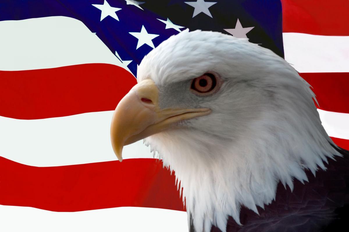 Символ сша белоголового орлана