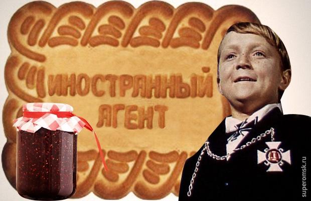 Минюст включил вчисло НКО-иноагентов челябинские «Правовую миссию» и«Школу призывника»