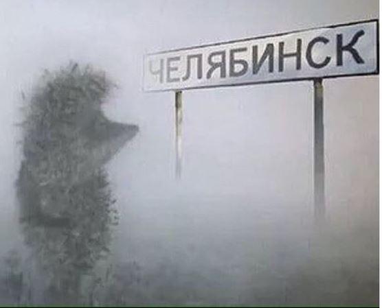 Борис Дубровский: Из-за смога все, что мыделаем— коту под хвост