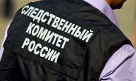 СК РФ по Челябинской области