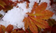осень зима
