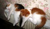 отопление квартир